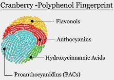 cran-fingerprint